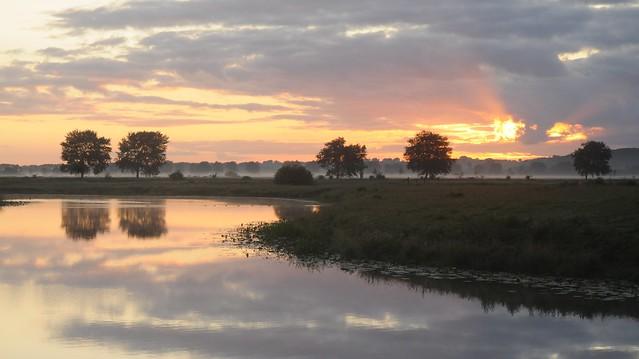 Morgens an der Alten Treeneschleife; Süderhöft, Nordfriesland (75)