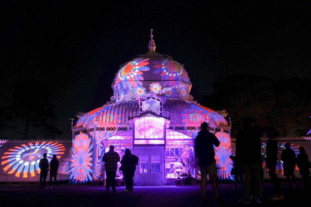 Conservatory of Flowers | Free things to do in San Francisco