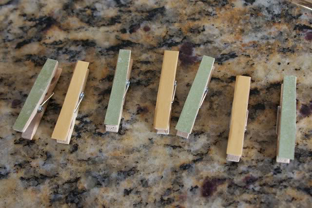 covered clothes pins