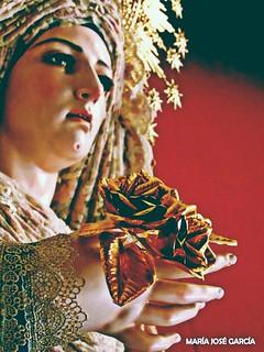 Rosas... de Pasión. #BuenasTardes ? María Santísima de la Anunciación, Antonio Jesús Dubé Herdugo (2015), Hermandad de la Borriquita #MadridCofrade #MiDulceMaría #DetallesEnLosQueMeFijo #FlorDeLasFlores