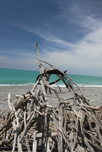 normanby beach timaru south canterbury new zealand scenic landscape driftwood sea ocean water