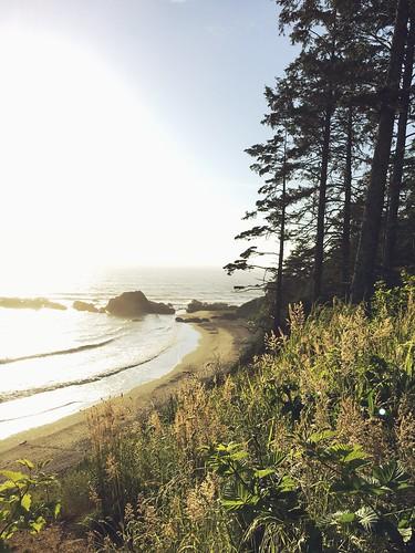 Beach 4, kalaloch