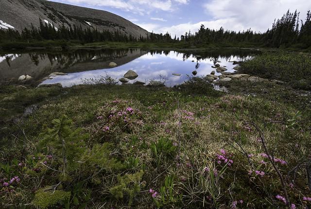 Pool with a View, Nikon D750, AF-S Nikkor 16-35mm f/4G ED VR