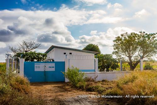 africa africandevelopmentbank africandevelopmentbankafdb afrika bad banqueafricainededéveloppement madagascar pflanzen routenationale7 régiondeatsimoandrefana sakaraha agriculture company irrigation organization planten