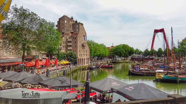 Old Harbour, Rotterdam, Netherlands - 5177