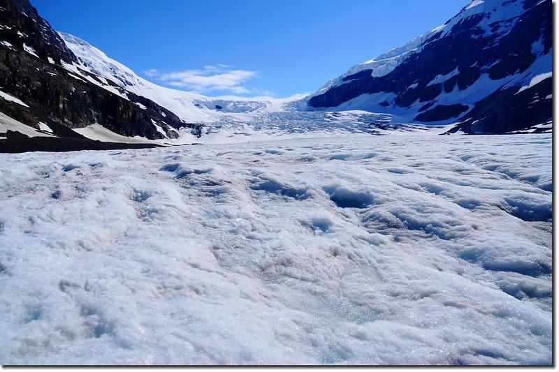 Athabasca Glacier (5)