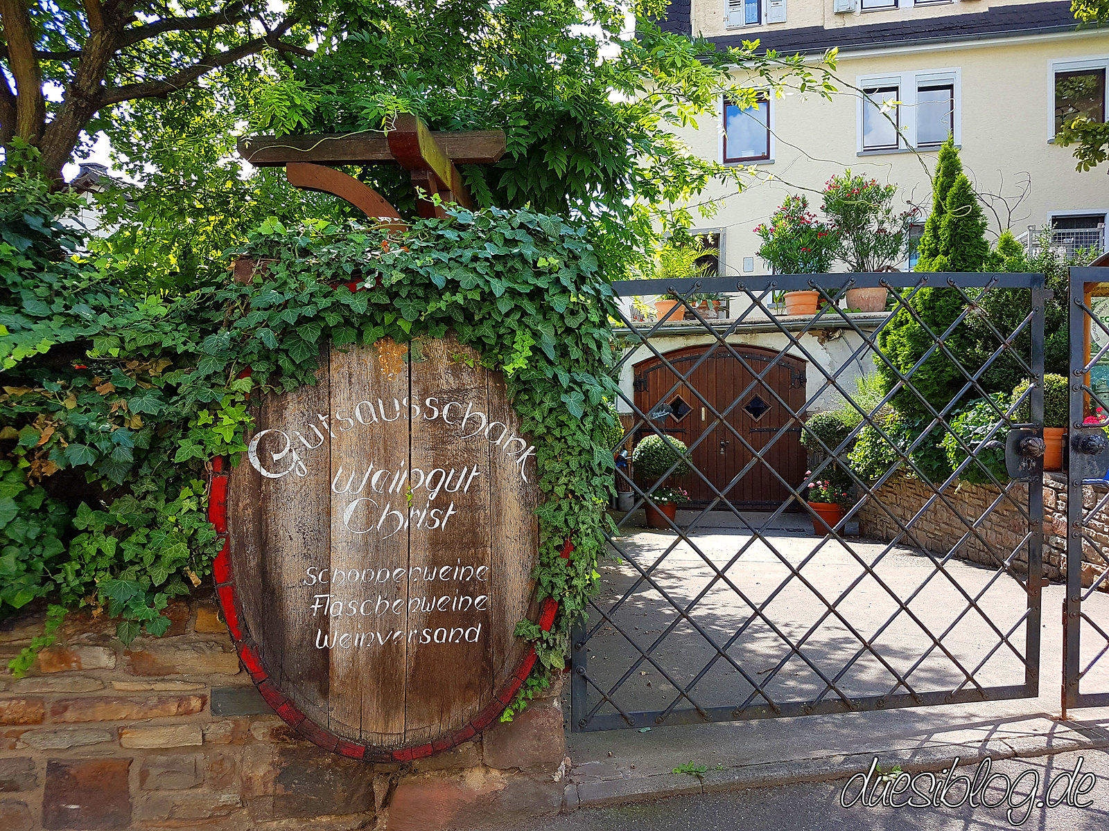 Ruedesheim vegan Rheingau Travelblog duesiblog 09