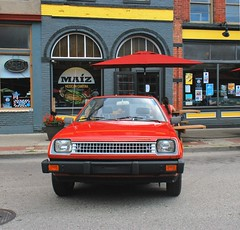 No Equine Here