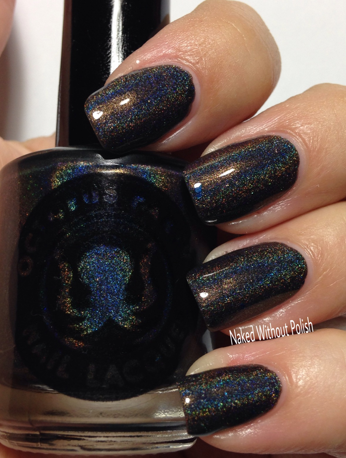 Octopus-Party-Nail-Lacquer-Logan-11
