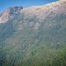 Ruta Hornopirén- Fiordo Leptepú