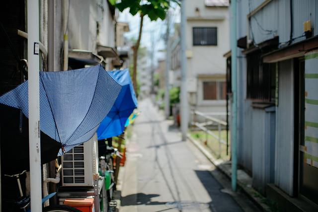 FUJI4339.jpg