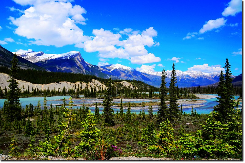 The scenery along  AB-93 N(Icefields Parkway) (9)