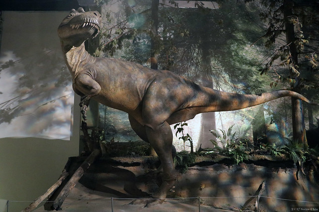 Museum of dinosaurs, Canon EOS REBEL T6S, Canon EF-S18-135mm f/3.5-5.6 IS STM