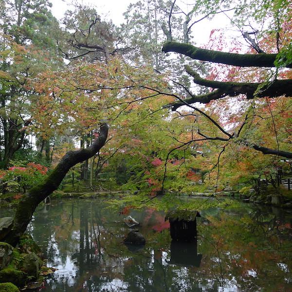 222-Kyoto