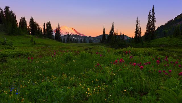 Sunrise in Mt Rainier NP (Chinook Pass, Mt Rainier NP, WA)