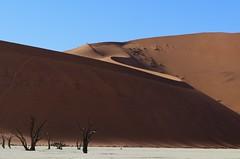 Namibia - Landscape
