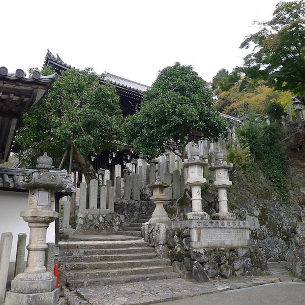 319-Nara
