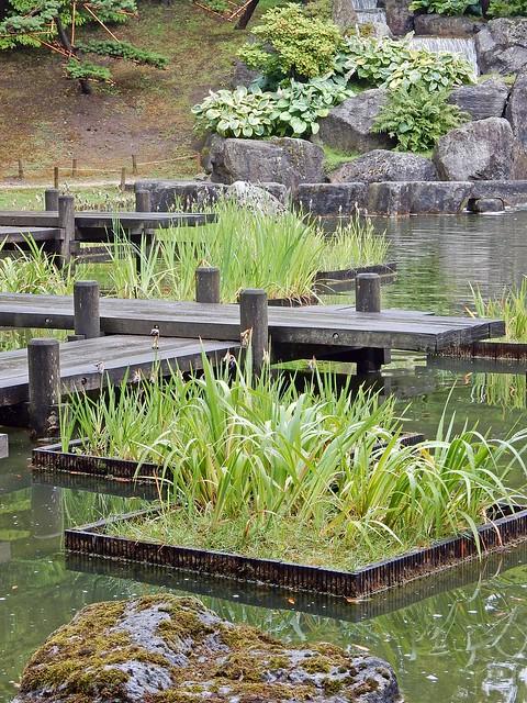 Symmetries of a pond, Nikon COOLPIX S9700