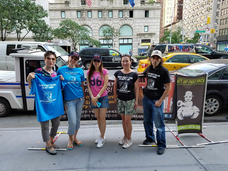 New York, South Korean Consulate General, 'Boknal' Demonstration for the South Korean Dogs and Cats (Day 1) – July 12, 2017 Organized by The Animals' Battalion