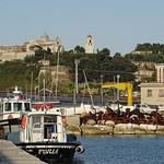 Ancona's fisherman