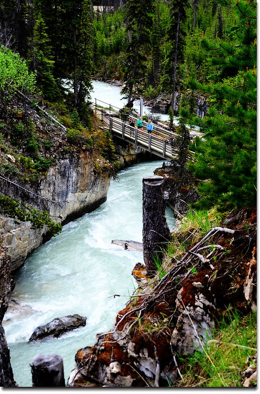 Marble Canyon, Kootenay National Park 2