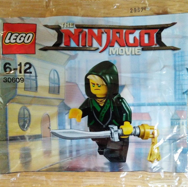 The LEGO Ninjago Movie 30609 Lloyd