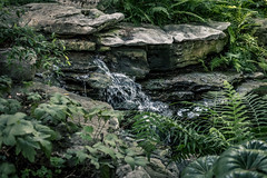 Waterfall, Dallas Arboretum
