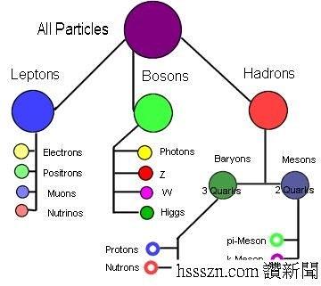 次元子粒子_结果