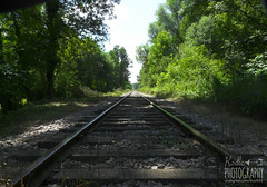 Railway in forest - Photo of Chaulgnes
