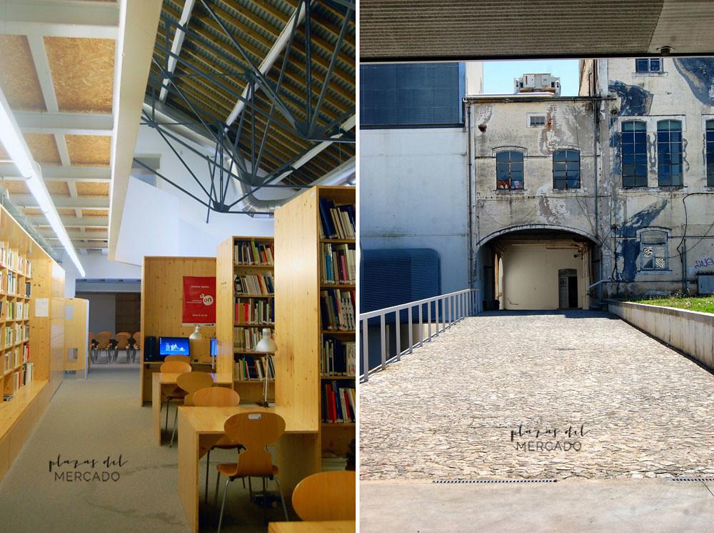 Leões_interior biblioteca_ módulo de artes escénicas_Sheila Palomares Alarcón_Abril 2017