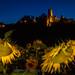2017-07-05-castello notte girasoli -1IMG_7730