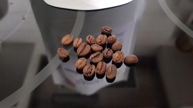 Nensebo beans