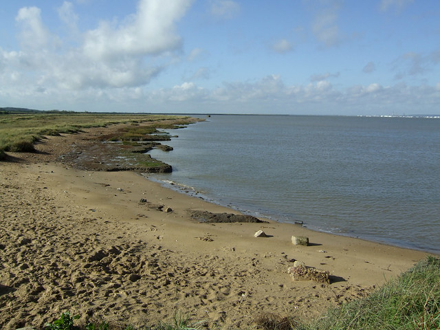 Salt marsh west of Allhallows-on-Sea