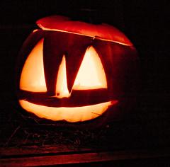 fiene's pumpkin
