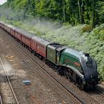 A4 Pacific Steam near Woking-E7180049