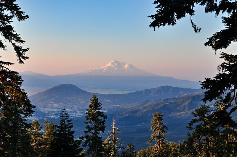 Mt. Shasta View