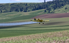 Crop Dusting in the Palouse 1