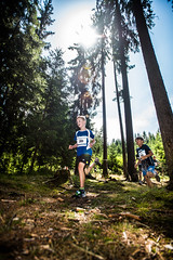 Běhej lesy Vysočina