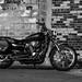 2005 Harley Davidson Sportster 1200C
