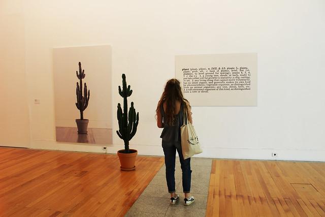 les cactus et moi musée lisbonne