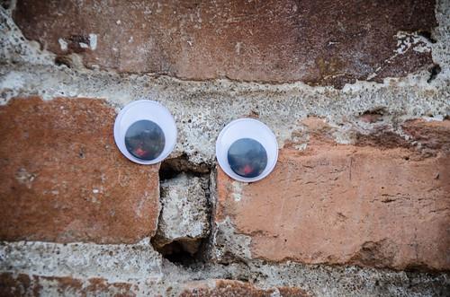 Googly-Eye Bombing Downtown Greenville-44