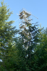 Installation of the eddy covariance system at new CA-Ca3 tower