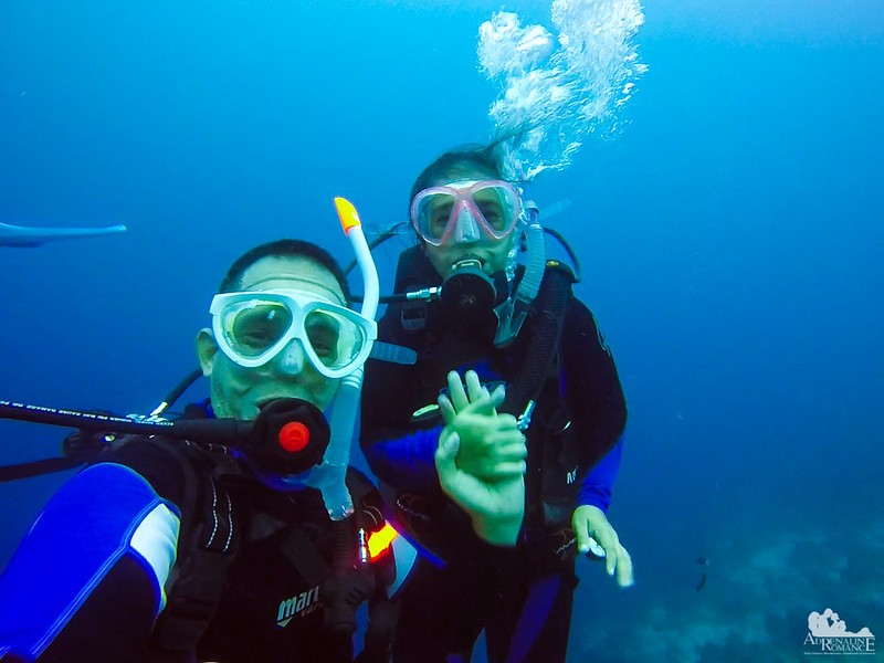 Couple Scuba Divers