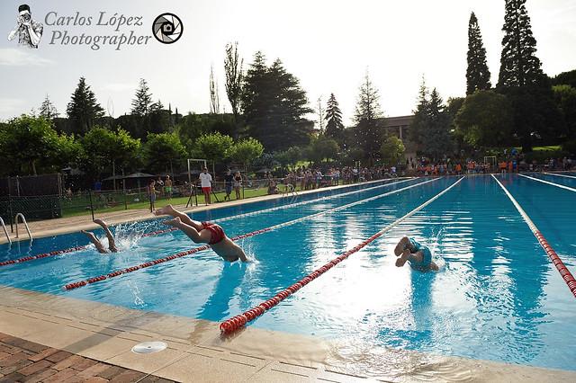 Campeonato de natación 08