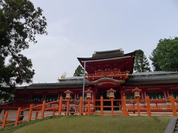 323-Nara