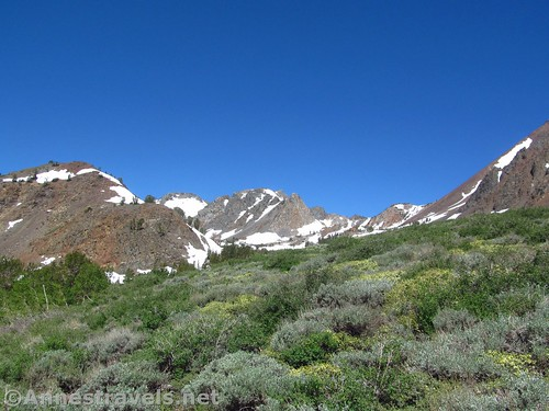 The earliest part of the Virginia Lakes Trail gives a taste of what's to come, Humboldt-Toiyabe National Forest, California