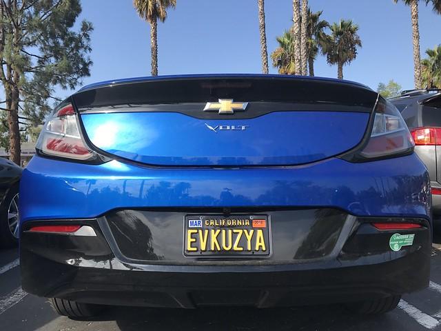 VWVortex com - Do you have personalized license plates?