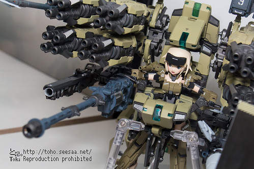 FAGE_FS-10