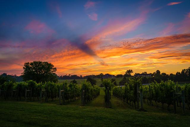 Tennessee - Sunset