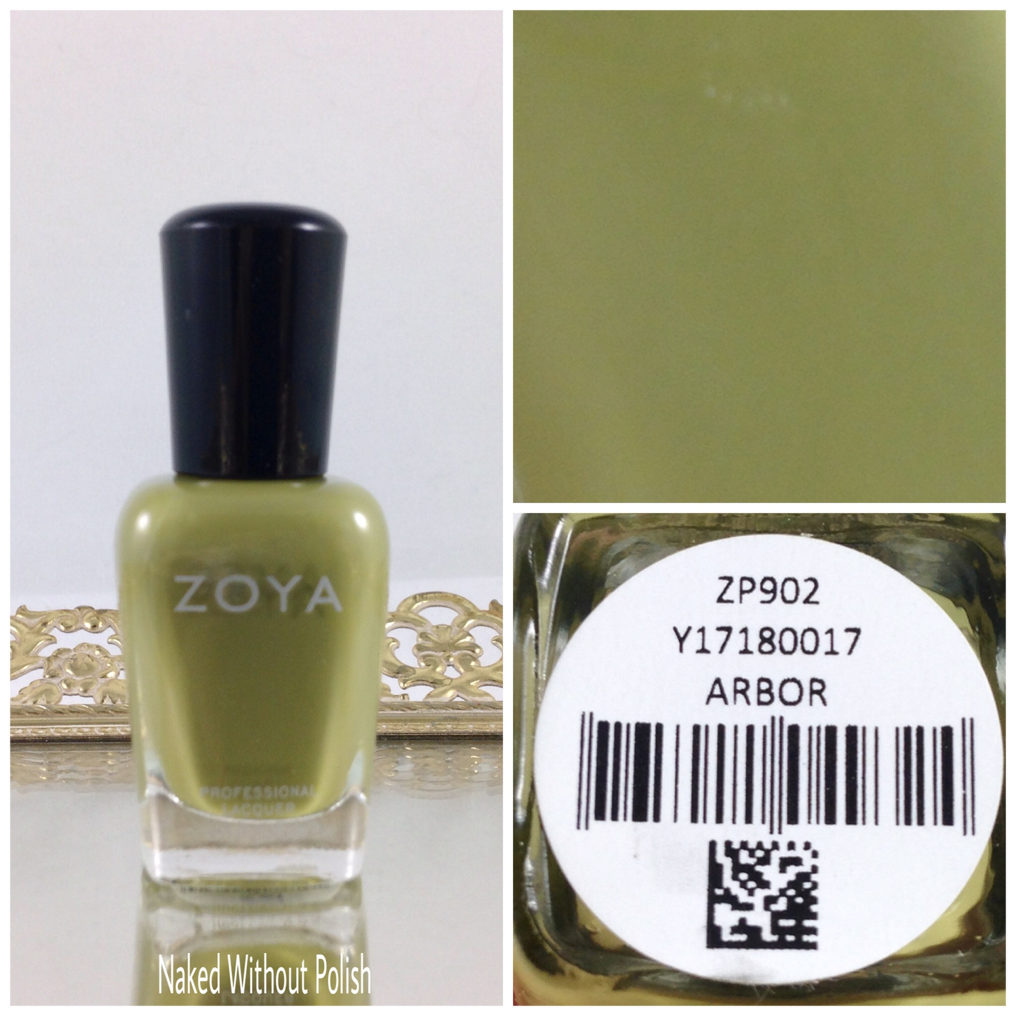 Zoya-Arbor-1